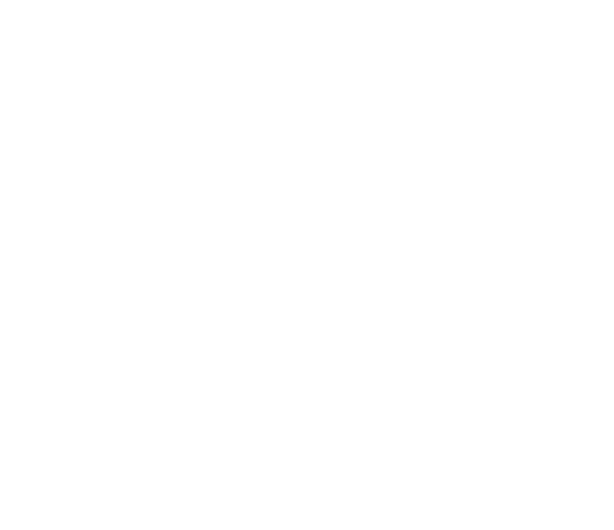 SAGE - Services & Advocacy for Gay, Lesbian, Bisexual & Transgender Elders